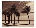 Key Biscayne I by Dennis Kelly art print