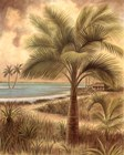 Island Palm II by Ron Jenkins art print